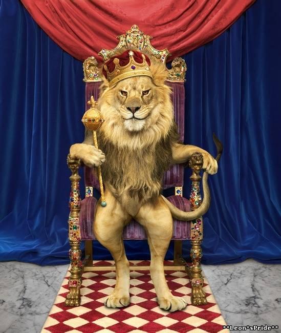 Поздравление с днем рождения для короля